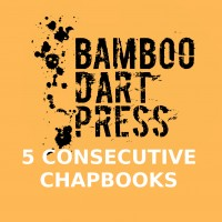 Block Package One - 5 Consecutive Chapbooks